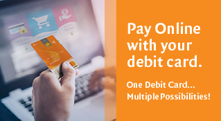 The Debit Card Online Payment feature