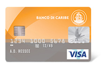 Visa Classic Card application form